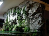 Steinzeit Design-Robby HandelsgesmbH Nfg KEG