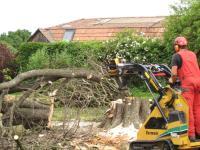 Rollrasen u. Baumpflege Ing. Günther Schranz