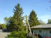 Gartenpflege und Baumabtragungen