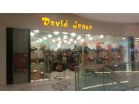 DAVID JONES International