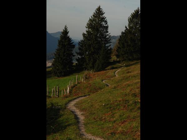Vorschau - Der Weg ist das Ziel