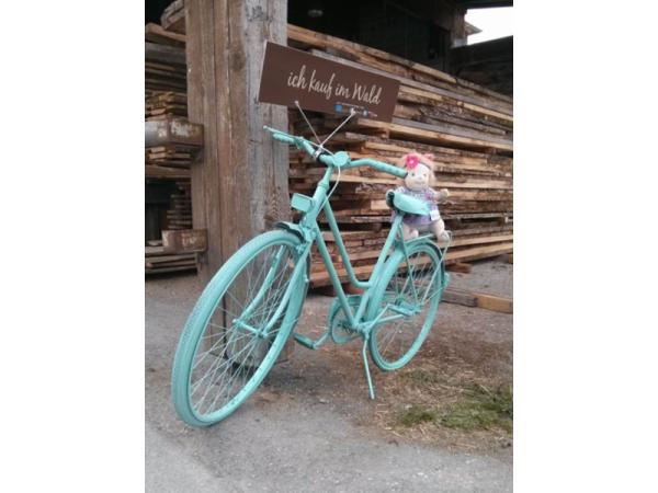 Unser lässiges Kauf im Wald Fahrrad