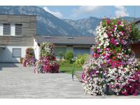PLANTSCAPE Österreich