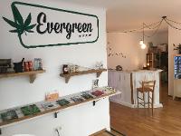 EvergreenHanf
