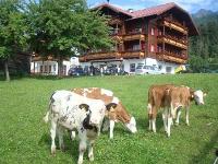 Pension Peterbauerhof - Bauernhofurlaub Ramsau am Dachstein