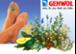 Ihr Fußpflegestudio am Bindermichl. ► Geh´sund durchs Leben❣
