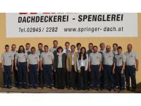Springer GmbH