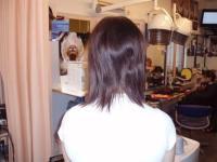 Haarverlängerung VORHER