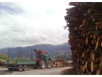Fendt Xylon mit Anhänger und Penz-Kran für Holztransporte
