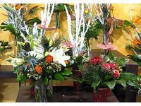 Blumen Beinhardt in Graz