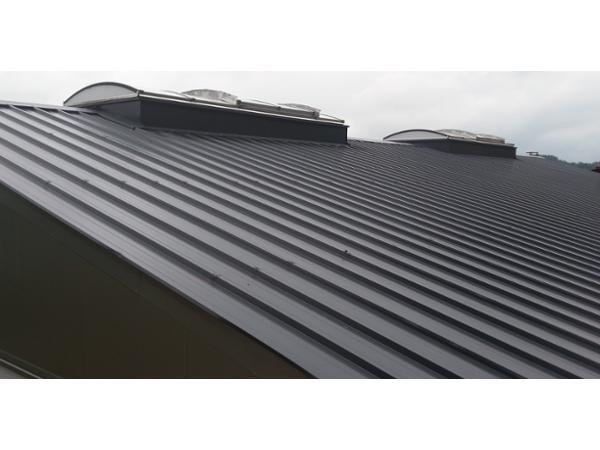 Sandwichpaneel Dach