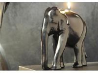 Elefantenkerze
