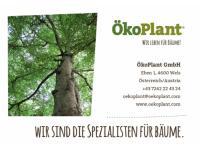 ÖkoPlant GmbH Baumschule