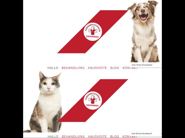 Website Tierambulatorium Kapfenberg