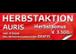 HERBSTAKTION      Zur Aktion nur ein Click