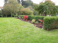 Wallner Rasenpflege