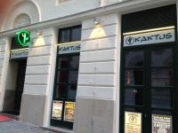 Kaktus Bar