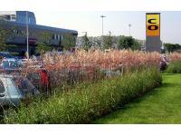 Grün für Wohnbau und Einkaufszentren