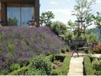 Kaschowitz-Gartenkonzepte