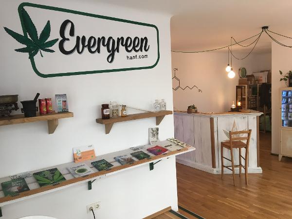 Vorschau - EvergreenHanf