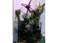 offenes Aquarium