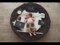 Newborn Nesterl mit allen Infos!
