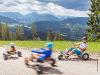 Thumbnail - Gemeindealpe - Mountaincarts