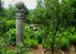 Größter Heilkräutergarten Österreichs