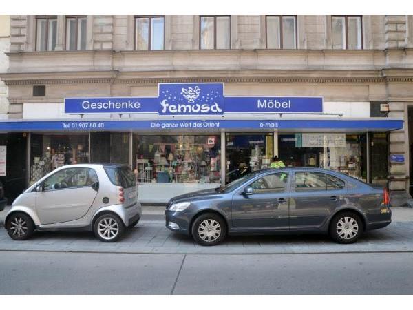 Vorschau - Foto 1 von Femosa HandelsgesmbH