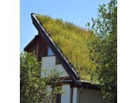 Steildach in Wien