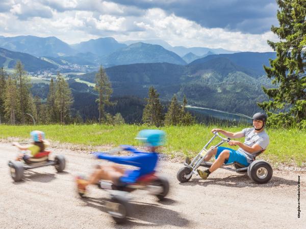 Vorschau - Gemeindealpe - Mountaincarts