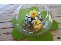 Aromatherapie mit ätherischen Ölen