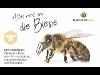Thumbnail - Alles rund um die Biene