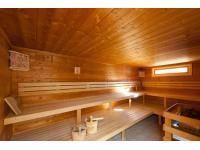 Finnische Sauna/Dampfsauna / Biosauna