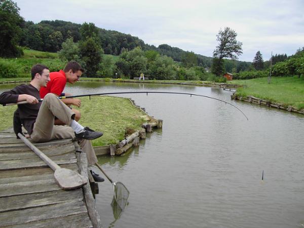 Vorschau - Fischen-entspannen-genießen am eigenen Teich