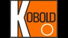 Die KOBOLD Messring GmbH