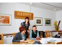 Hammer Bau-Möbeltischlerei u MöbelhandelsgesmbH