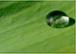 Prävention, Diagnostik, Sanierung & 24h Notruf Wasserschaden