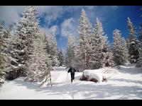 Schneeschuhtour Pretul Joglland