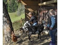 Kinderspielplatz am Bauernhof Irxner