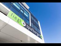 Fiegl+Spielberger