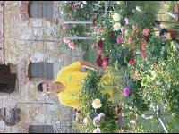Haring - Die Gärtnerei