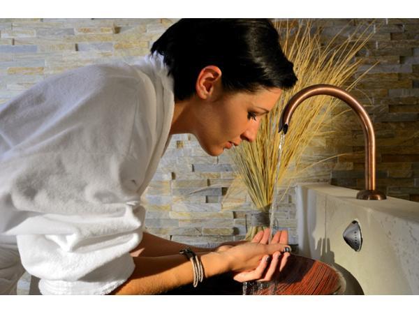 Wellness - Vital-Landhotel Pfleger