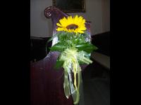 Bankstrauß Sonnenblume