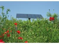 Drehbarer Schnauer-Photovoltaik-Tracker