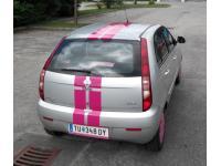 Pink-Streifen hinten