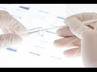 DNA Profil