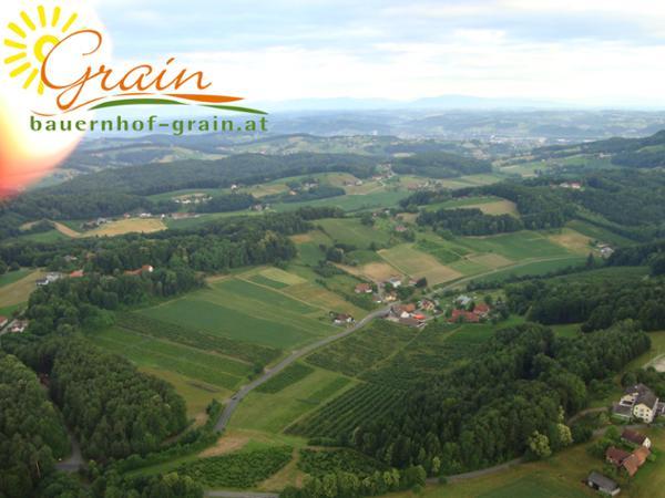 Vorschau - Foto 4 von Urlaub am Bauernhof Anna & Martin Grain