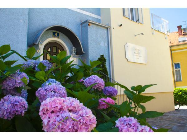 Vorschau - Foto 1 von Hotel Villa Rückert