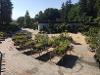 Thumbnail Maly Gartengestaltung 1